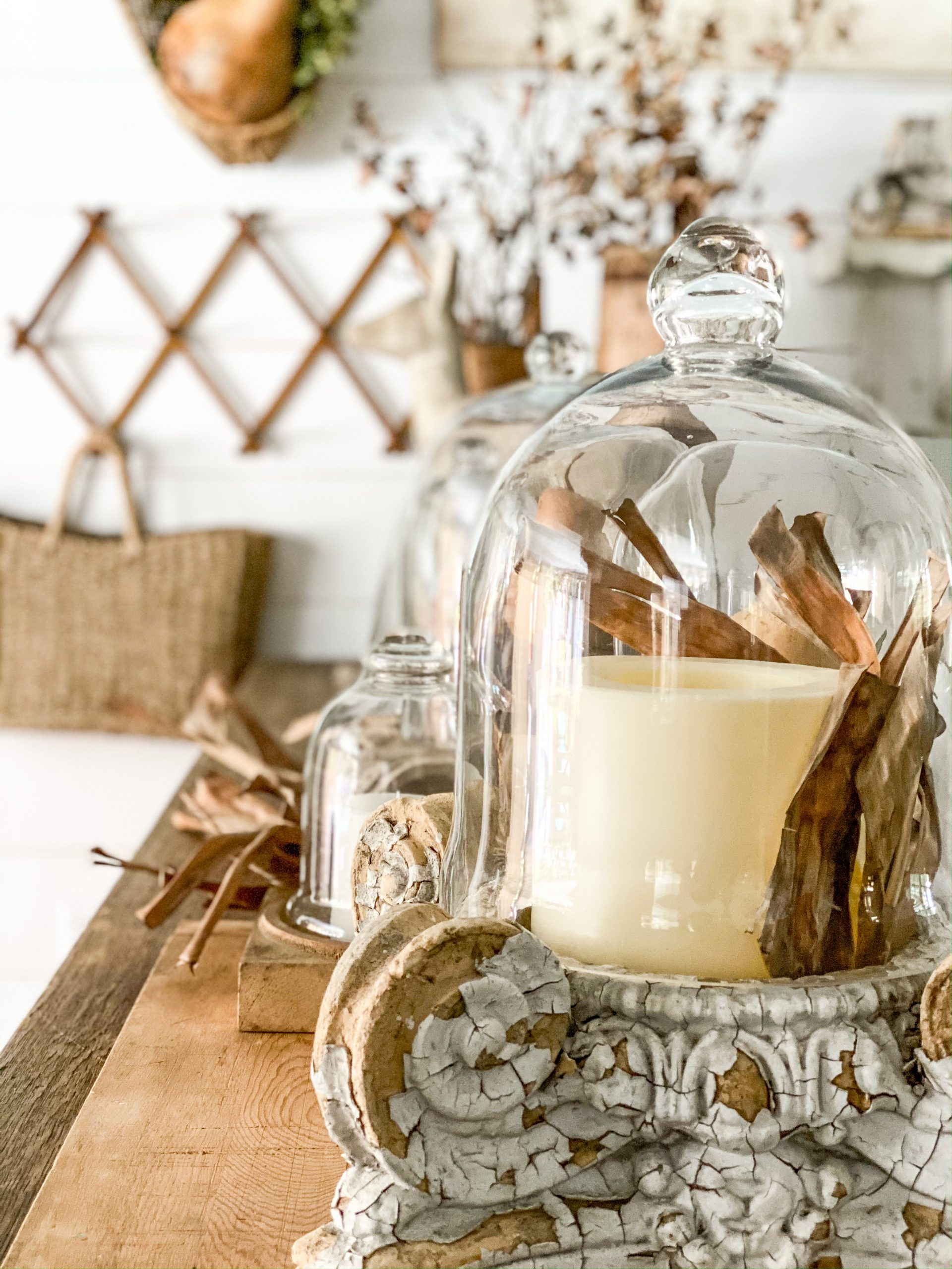 5 Easy Ways to Style a Cloche for Fall Decorating